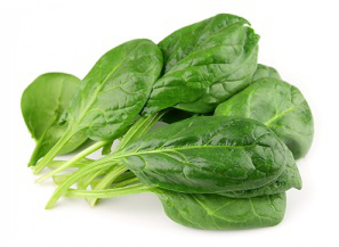 Best Practices to Process IQF Spinach