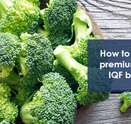 HOW TO PRODUCE PREMIUM QUALITY IQF BROCCOLI