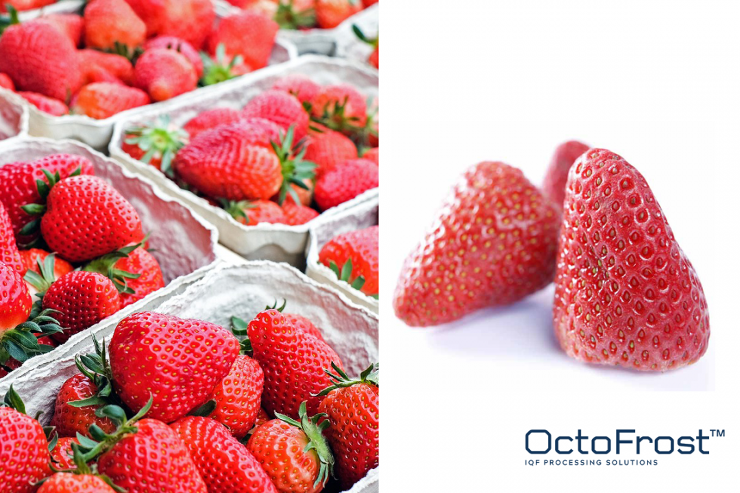 WHY PROCESSORS SHOULD FOCUS ON IQF STRAWBERRIES