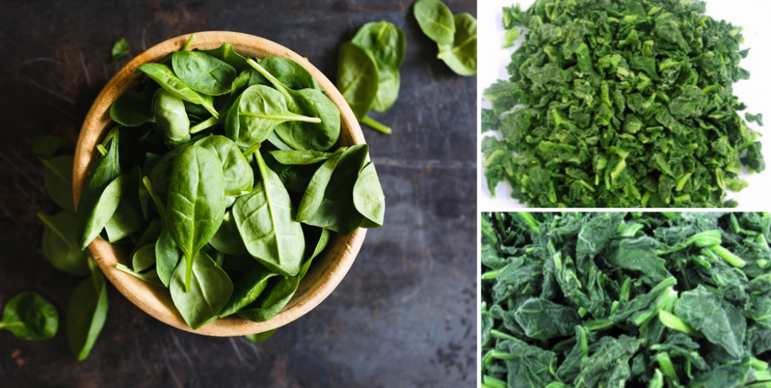 THE 3 STEPS FOR ACHIEVING PREMIUM IQF SPINACH