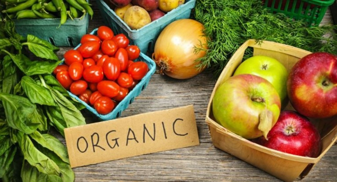 THE GLOBAL ORGANIC SECTOR IS EXPECTED TO GROW OVER THE NEXT DECADE