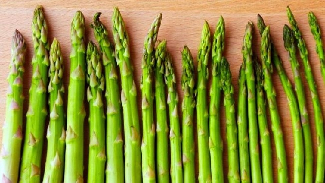 BEST PRACTICES FOR FREEZING ASPARAGUS