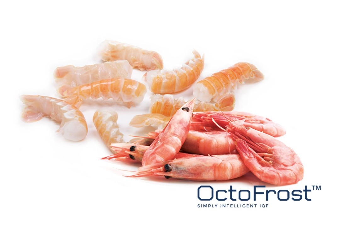 NEW TRENDS IN THE IQF INDUSTRY: IQF SEAFOOD