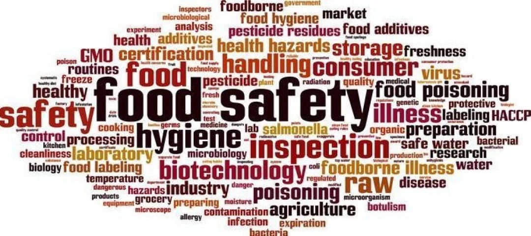 WHAT TO LOOK AT WHEN CHOOSING A FOOD SAFE FREEZER