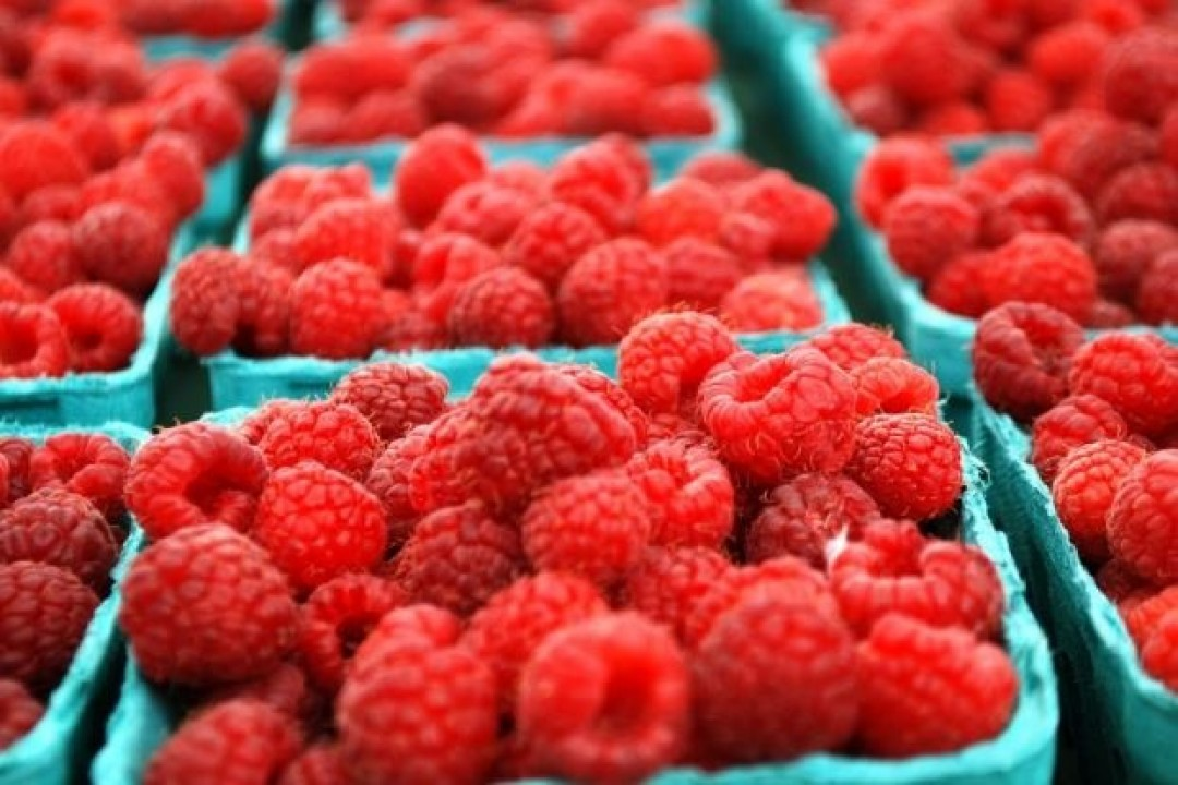 HOW DOES THE FRESH AND FROZEN RASPBERRY MARKET LOOK LIKE?