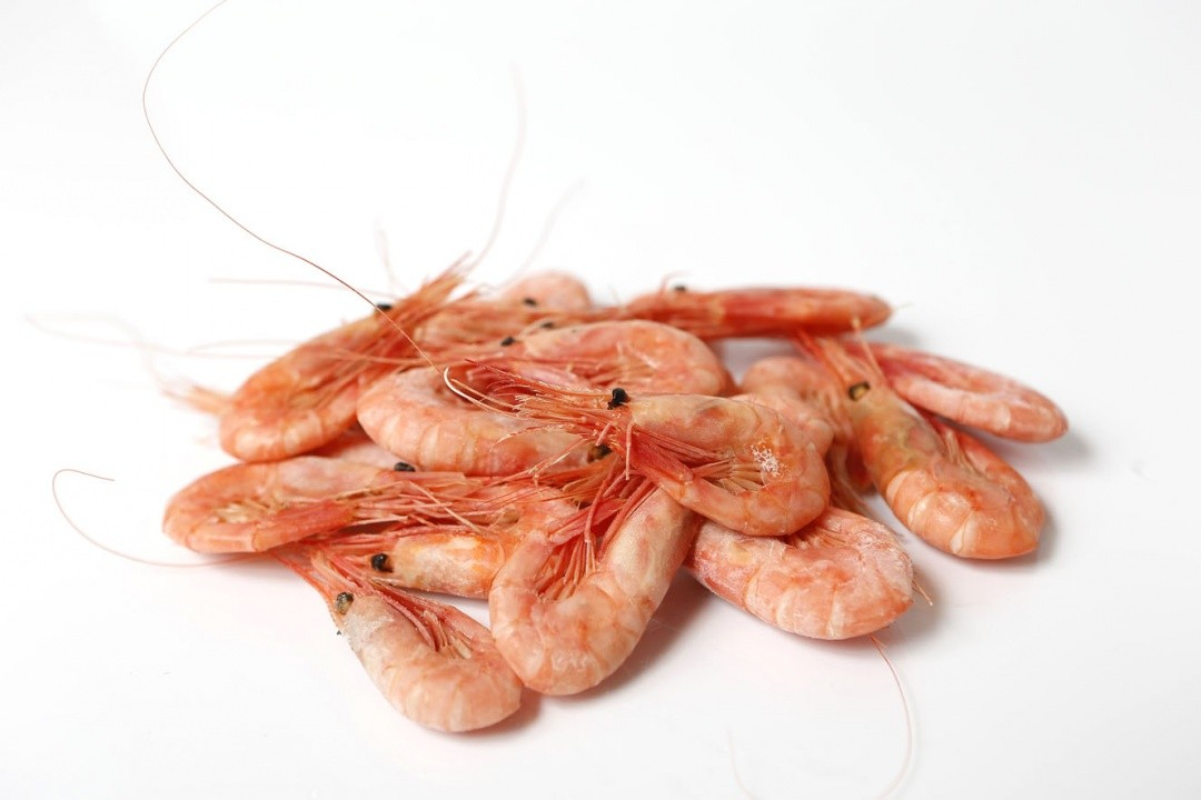 FREEZING SHRIMP - CHALLENGES AND OPPORTUNITIES