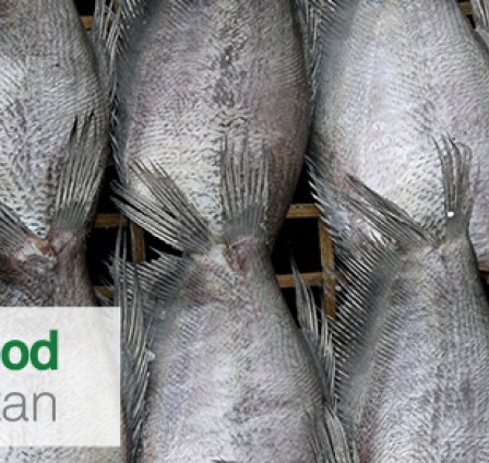 UPCOMING EVENT: OCTOFROST AT WORLD FOOD UZBEKISTAN 16 - 18 MARCH, 2016
