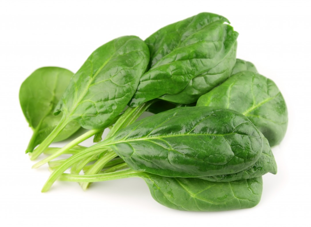 Processing leafy greens - Washing is not enough to mitigate E.coli